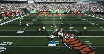 Madden vision cone
